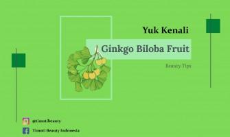 Timoti Tip :  IDENTIFY GINKGO BILOBA FRUIT